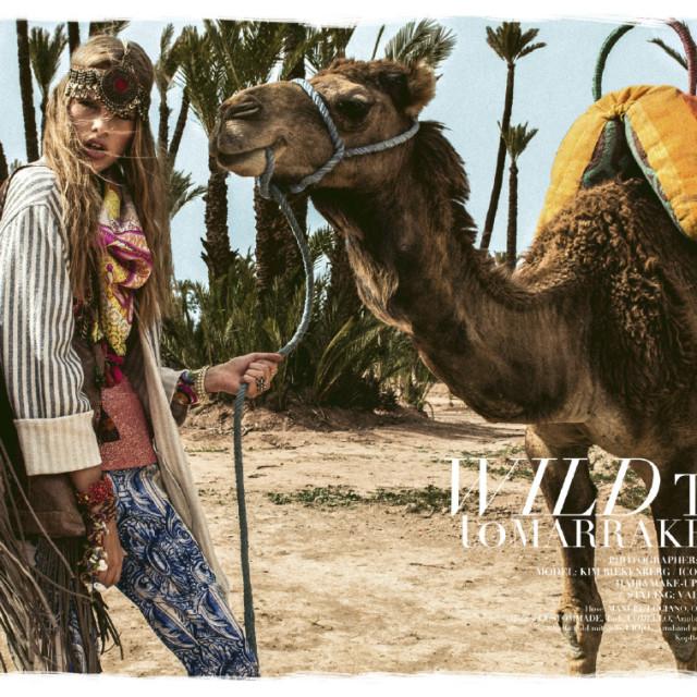 Wild Trip To Marrakesch by Stefan Imielski